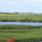 Waterland Oost